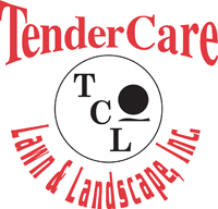 Tendercare_BBQwebsite.jpg
